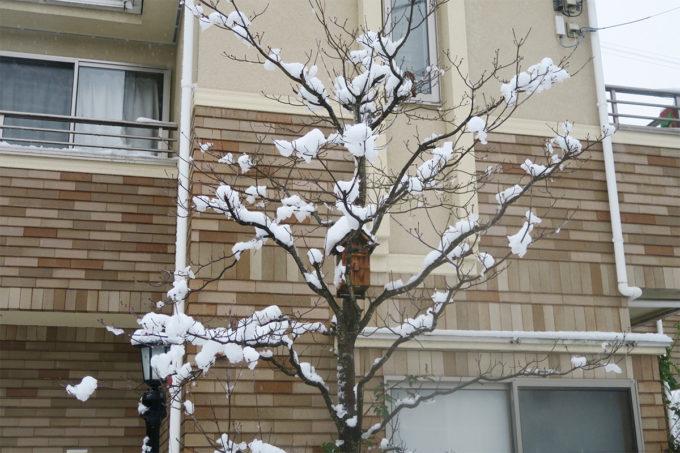 03_雪も眺めるだけなら綺麗でいいよね