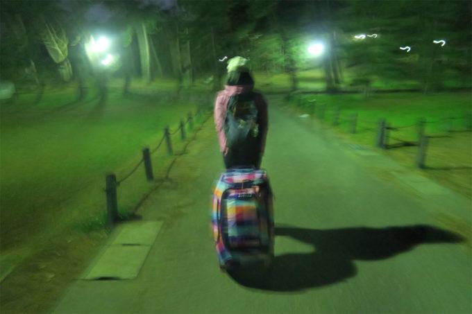 夜の稲毛公園