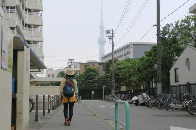 墨田区のスカイツリーが見える場所
