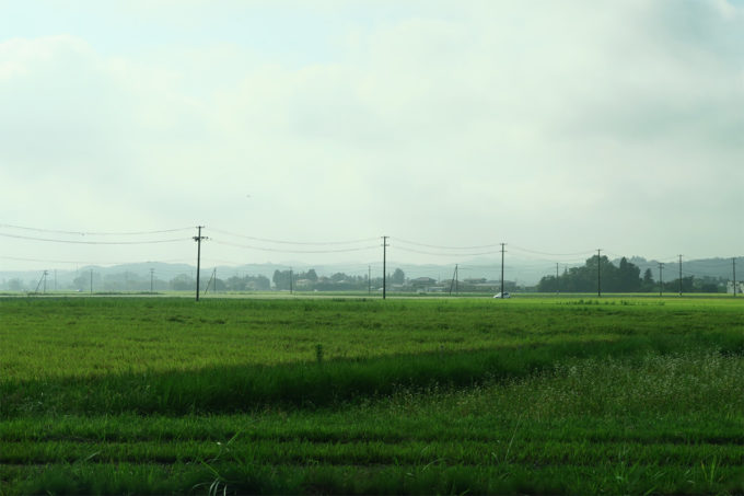いい田園風景ですね