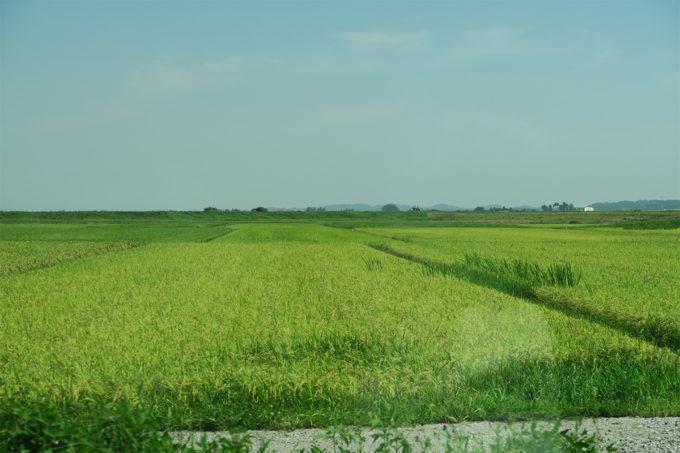 いい田園風景ですね4