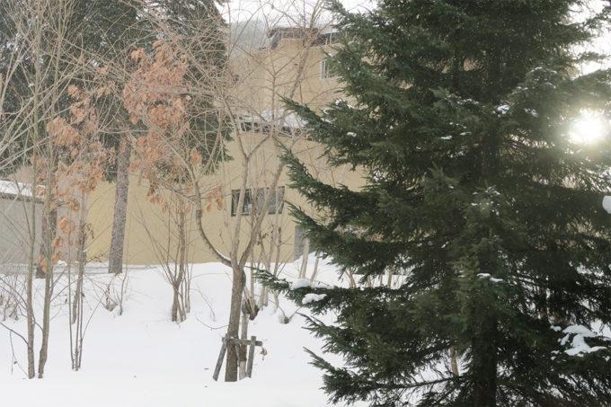 45_雪降ったり