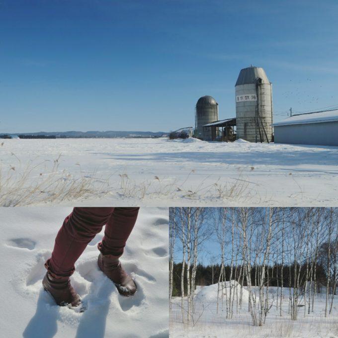 20_雪景色を車で走って帯広へ戻ります