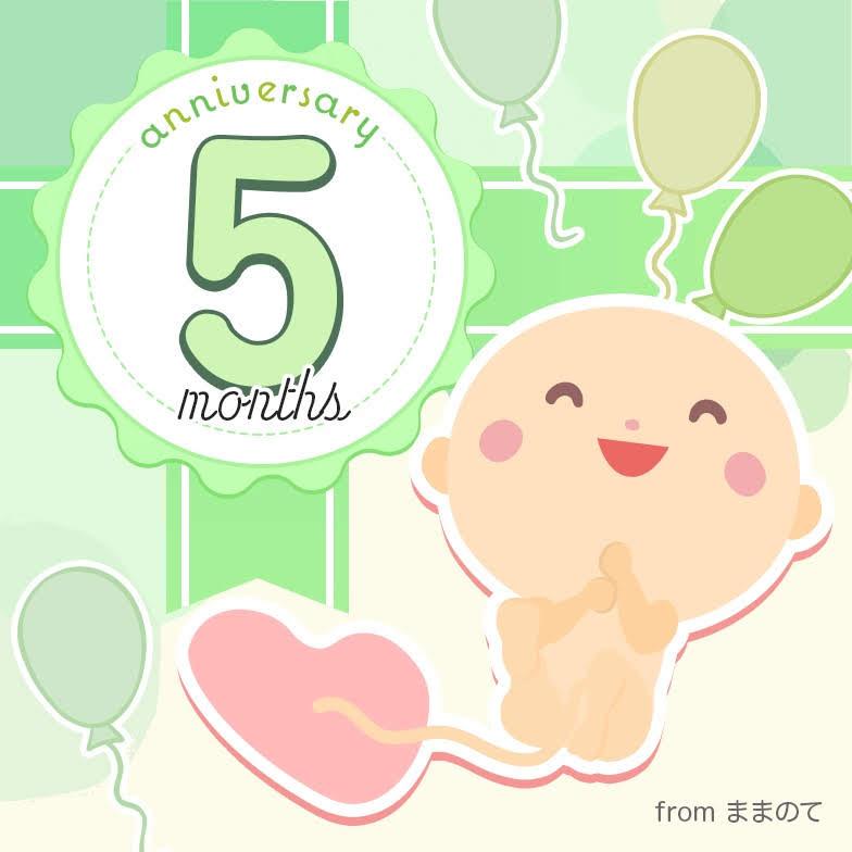5 ヶ月 赤ちゃん 妊娠